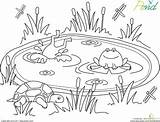 Pond Coloring Worksheets Worksheet Pages Kindergarten Animals Clipart Education Printable Frog Preschool Sheets Crafts Habitat Frogs Preschoolers Printables Spring Animal sketch template