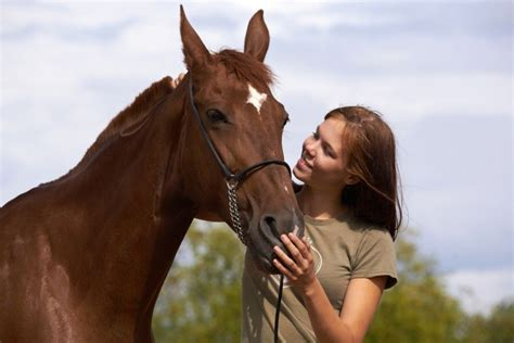 horse pet pets holding equine buying avoid discover living