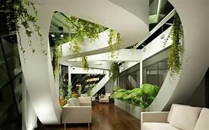 Decoración de interiores con plantas, regálate bienestar