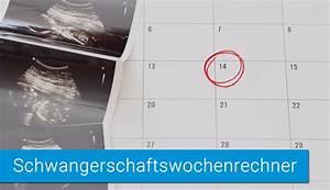 Elternzeit Berechnen : ssw rechner schwangerschaftsrechner geburtstermin und ssw berechnen ~ Themetempest.com Abrechnung
