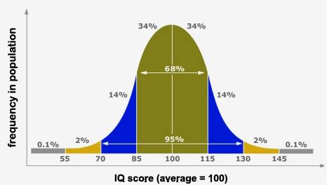 iq score   iq score explained