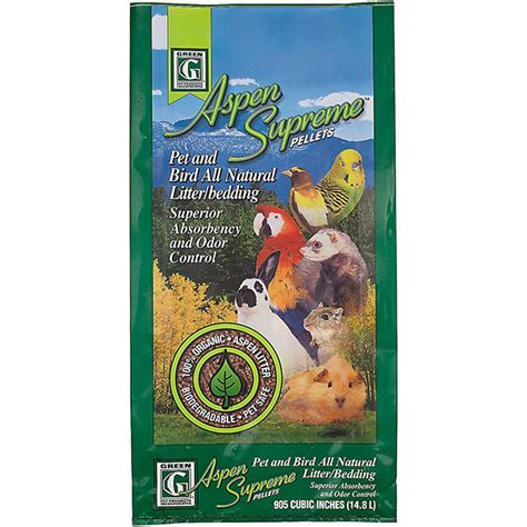 Aspen Bedding For Guinea Pigs by Best Bedding For Guinea Pigs Reviews And Tips For