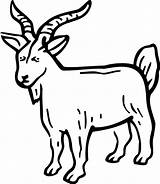 Goat Billy Coloring Pages Print Template Button Through Sketch Grab Feel Well Please Tocolor sketch template