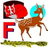 animals that start with the letter f flounder stock photo images 1 653 flounder royalty free 20456 | k8194978