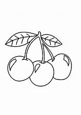 Cherries Coloring Three Printable Pages Cherry A4 Categories Fruits Description Coloringonly sketch template