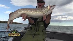 Giant Pike Fish