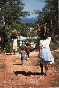 Jamaica Hills