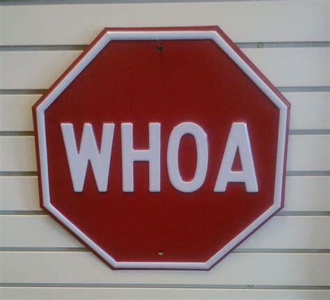 Whoa Very Heavy Embossed Steel Stop Sign Shaped Sign Ebay