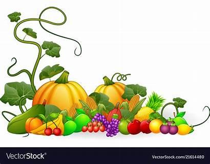 Harvest Vegetables Fruits Autumn Clipart Vector Fruit