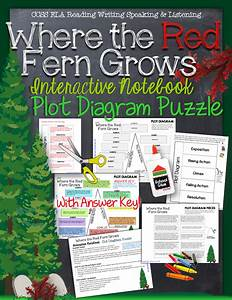 Where The Red Fern Grows  Interactive Notebook Plot