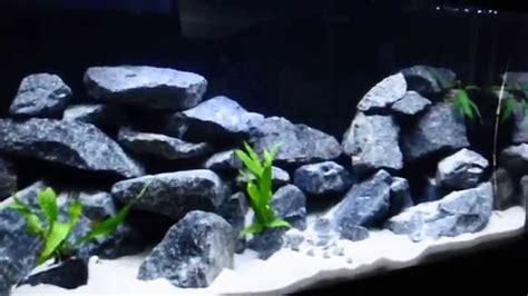 Cichlid Aquascape by 60 Gallon Malawi Cichlid Aqua Scape
