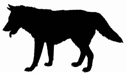Silhouette Wolf Walking Animal Clipart Clip Away