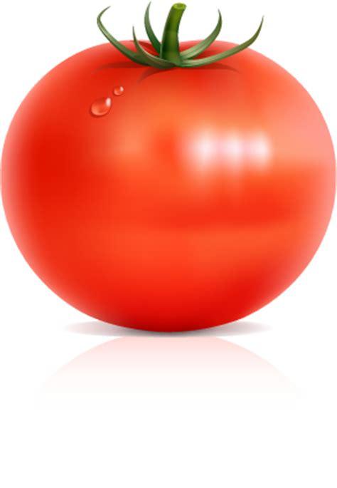 vectorian art big red tomatto vectorfree