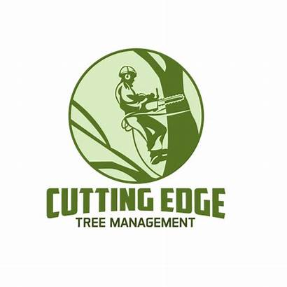 Tree Cutting Removal Edge Specialists Needs Management