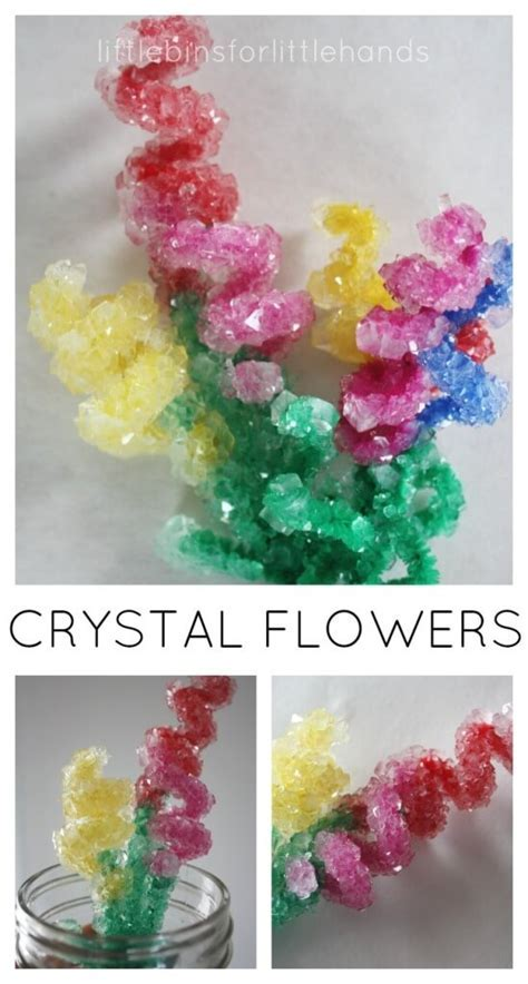 Crystal Flowers Spring Science Experiment and Craft for