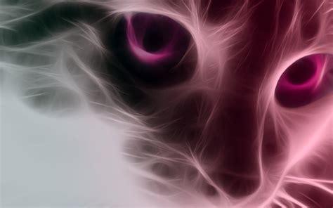 pink cat wallpaper  smillinkillah  deviantart
