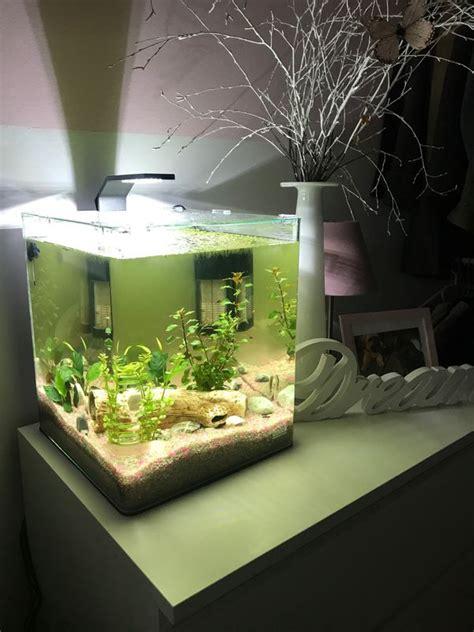 nano aquarium mit unterschrank dennerle nano cube mini aquarium 30 liter komplett set in schwabach fische aquaristik kaufen