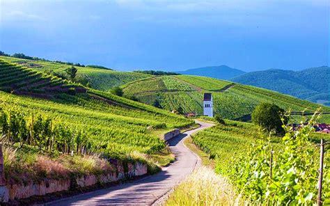 chambre d hotes alsace route des vins route des vins d alsace pfaffenheim escapades de charme
