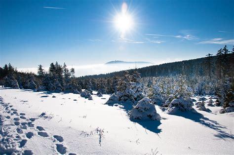 Im Winter by Zauberhafte Welt Aus Eis Und Schnee Der Harz Im Winter