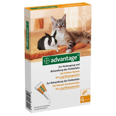 advantage  fuer katzen und zierkaninchen shop apothekecom