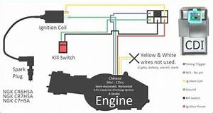 110cc Wiring Harness Diagram