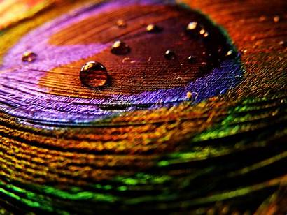 Colorful Water Drops Wallpapers Fun