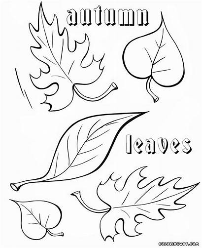 Autumn Coloring Pages Colorings Nature