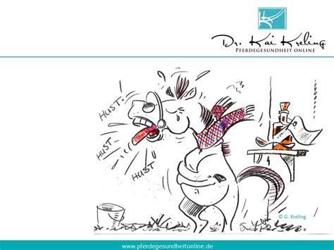 pferdegesundheit allgemein archive pferdegesundheit