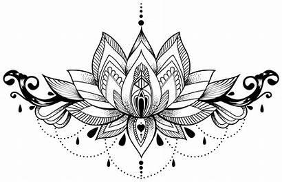 Lotus Flower Mandala Drawing Tattoo Pngio Transparent