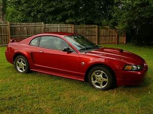 Find used 2004 Ford Mustang 40th Anniversary Model in Halethorpe, Maryland, United States, for ...