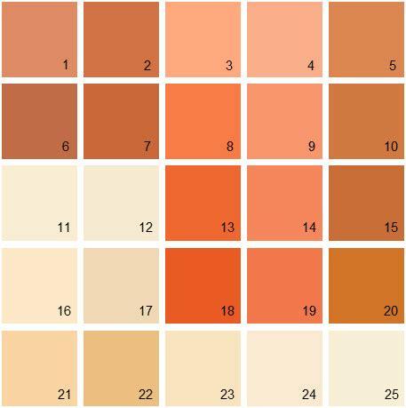 best 60 rustic orange paint design ideas of best 25 burnt orange paint ideas on pinterest