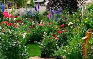 Jardinería » jardin