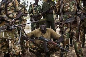 Wildlife devastated in South Sudan war: conservationists ...