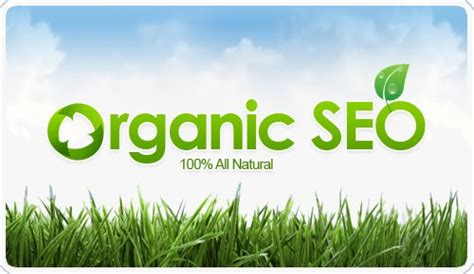 Organic Seo Services by Organic Seo Services Web Presence Seo