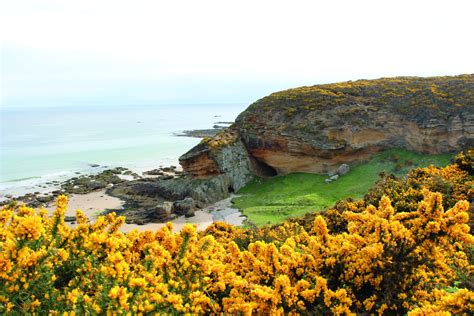 Geology Of The Moray Coast Deposits Mag