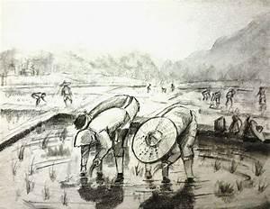Pencil and Canvas: Pencil sketch: Chandrapur Farmers