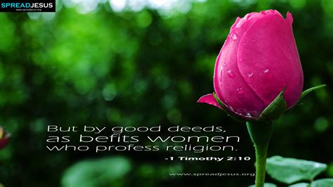 women daily bible quotesdaily bible reaingsbible stories