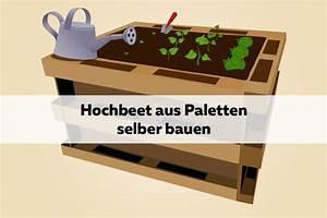 Hochbeet Bauen Anleitung : hochbeet aus paletten selber bauen diy anleitung europaletten ~ Orissabook.com Haus und Dekorationen