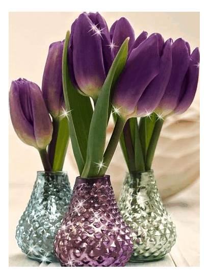 Tulips Flowers Flower Vase Planting Vases Spring