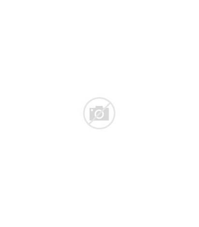 Hazard Triangle Stickers Roll Laser Printers Label