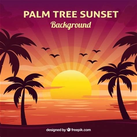 sunset background vectors   psd files