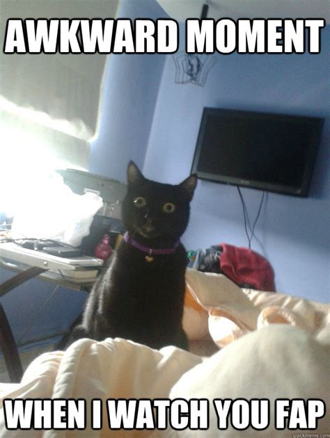 Awkward Cat Meme - awkward moment when i watch you fap overly attached cat quickmeme