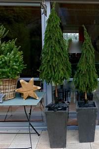 Basteln Mit Zweigen : b ume aus tannenzweigen binden weihnachten ste ste ~ Watch28wear.com Haus und Dekorationen