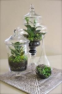 Pflanzen Für Terrarium : blumen dekoration aus lebenden pflanzen als mini terrarium tasar m ~ Orissabook.com Haus und Dekorationen