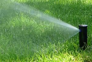 Pflanzen Automatisch Bewässern : automatische bew sserung f r den garten zuber aussenwelten ag ~ Frokenaadalensverden.com Haus und Dekorationen