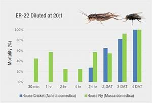 Ecoraider For Pest Management Professionals