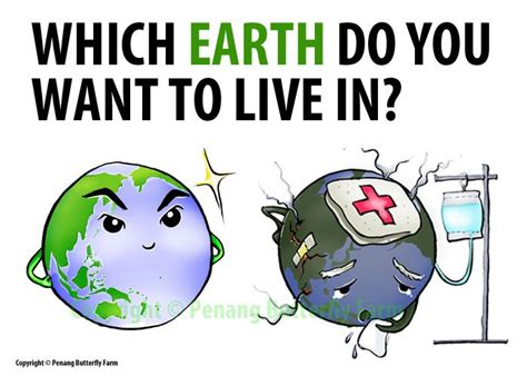 what part of a green do you use damage to mother earth daily things you should do to help preserve mother earth hug for
