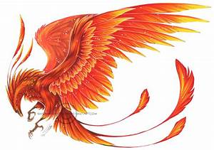 Phoenix by Shadow-of-Destiny on DeviantArt