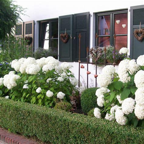 Kleiner Vorgarten Gestaltungsideen by Vorgarten Gestaltungsideen Pflanzen Und Tipps Mein