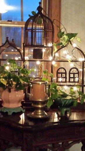 bird cage decorated  lights  plants bird cage